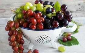 3 thực phẩm hàng đầu giúp phòng tránh ung thư lưỡi