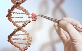 Ung thư thực quản có di truyền không?