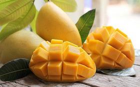 Tổng hợp những loại trái cây chứa nhiều đường tốt cho sức khoẻ