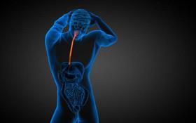 Nguy cơ ung thư thứ phát trên bệnh nhân mắc ung thư thực quản