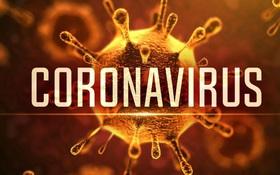 Các bệnh nhân nhiễm virus corona Vũ Hán đa phần được điều trị và hồi phục hoàn toàn: Cảnh giác, nhưng không nên lo lắng