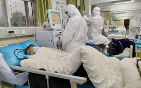 WHO tuyên bố virus corona 2019 là tình trạng Khẩn cấp Y tế Công cộng Quốc tế (PHEIC): điều này có ý nghĩa gì?