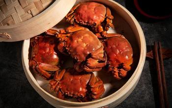 Cả gia đình bị sán lá phổi sau khi ăn cua: Cảnh báo loại ký sinh trùng đặc biệt nguy hiểm trong món ăn này!