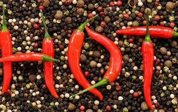 Quan trọng: Viêm amidan hốc mủ kiêng ăn gì và nên ăn gì?