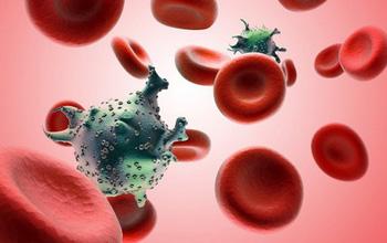 Bệnh bạch cầu là gì? Triệu chứng, nguyên nhân & điều trị