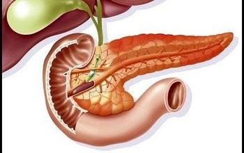 Viêm tụy là gì? Những điều cần biết về bệnh viêm tụy