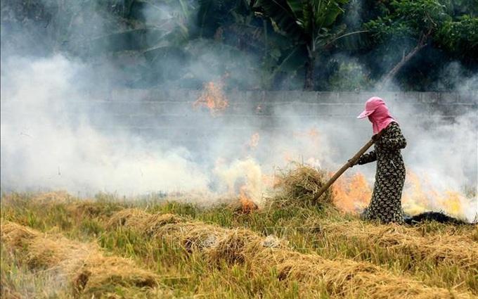 Cảnh báo tác hại sức khỏe từ khói đốt rơm rạ