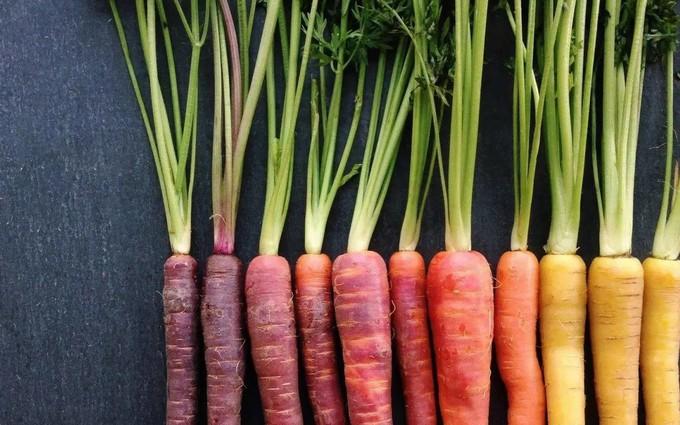 5 loại vitamin cần thiết cho vòng 1 căng tròn và phòng ngừa ung thư vú hiệu quả