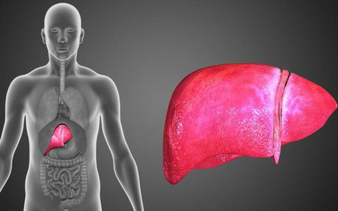 Ung thư gan đang diễn biến âm thầm trong cơ thể bạn