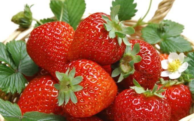Điểm mặt những thực phẩm giải độc phổi dễ tìm, dễ ăn
