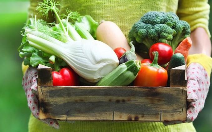 Thực phẩm cho trẻ ăn dặm: Ăn gì và không ăn gì?